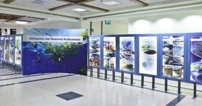 Έκθεση για το Θαλάσσιο Περιβάλλον στο Αίγιο