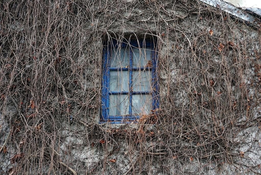window-2165891_1280