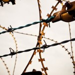 barbed-wire-2074965_1280