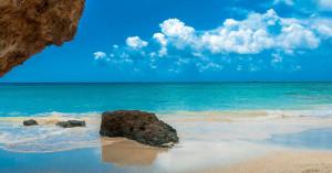 WWF: Μαζί κρατάμε τις παραλίες μας ζωντανές!