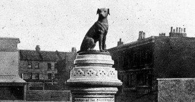 """""""Brown Dog affair"""" - Στη μνήμη του καφέ σκύλου που θανατώθηκε για την επιστήμη"""