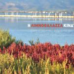 limnothalaza