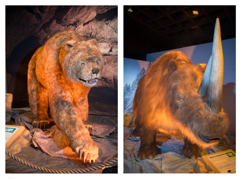 Cave-Bear-(Ursus-Spelaeus)-Woolly-Rhino-Ice-Age