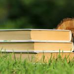 books-1539528_1920