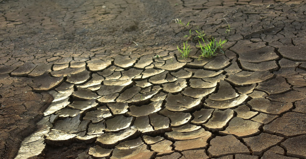 drought-2992785_1280