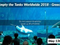 """Empty the Tanks"" – Διαμαρτυρία στο Αττικό Πάρκο για την παράνομη αιχμαλωσία δελφινιών"