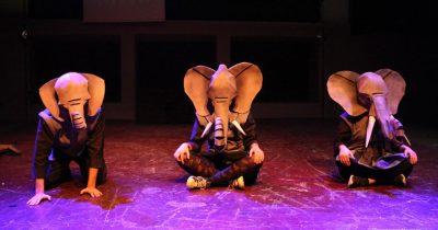 Ο «Αλυσοδεμένος ελέφαντας» πάντα θα μας ταξιδεύει και θα μας μαθαίνει τη ζωή