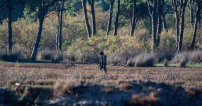 ΟΙΚΙΠΑ: Όργιο λαθροθηρίας στην καρδιά του Εθνικού Πάρκου Κοτυχίου - Στροφυλιάς