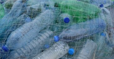 Έκθεση WWF Ελλάς: 17 μέτρα για τη μείωση των πλαστικών απορριμμάτων