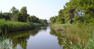 Καταγγελία του άρθρου 218 στην Ευρωπαϊκή Επιτροπή από περιβαλλοντικές οργανώσεις