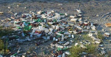 Greenpeace: Ουσία ή ευχολόγια η νομοθεσία για τα πλαστικά μίας χρήσης;