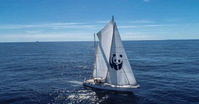 """Το σκάφος WWF """"Blue Panda"""" φτάνει στο Ιόνιο"""