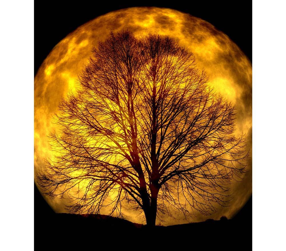 moon-165487_1280-(1b)