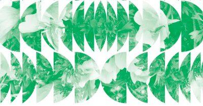 Φεστιβάλ Πριμαρόλια 2019 - Έκθεση σύγχρονης τέχνης «Έλα στον κήπο μου»
