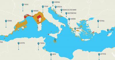 WWF: Η Μεσόγειος παραμένει χωρίς καμία προστασία