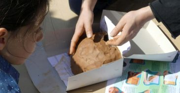 Σχολικά «χελιδονίσματα» 2020: Καλωσορίζουμε τα χελιδόνια