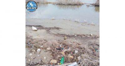 Φορέας Διαχείρισης Δέλτα Έβρου και Σαμοθράκης - Πρόγραμμα για την ευαισθητοποίηση σχετικά με τη ρύπανση στους υγροτόπους