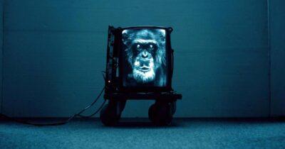 Online βιντεοτέχνη και συνεργασίες του Video Art Μηδέν για τον Ιούλιο
