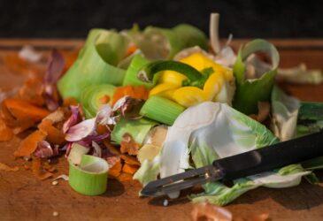 WWF: 88 εκατ. τόνοι τροφής καταλήγουν στα σκουπίδια ετησίως στην ΕΕ