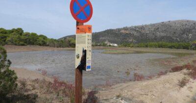 Στροφυλιά: Ολοκληρώθηκαν σημαντικές δράσεις διαχείρισης ειδών και οικοτόπων