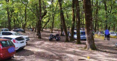 Καταγγελία της Οικολογικής Κίνησης Πάτρας για Αγώνες ταχύτητας αυτοκινήτων στην καρδιά του δάσους της Φολόης