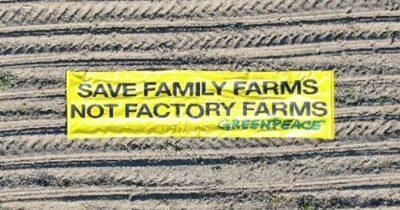 Η Greenpeace ζητάει σχεδιασμό νέας πρότασης για την ΚΑΠ που θα διασφαλίζει βιώσιμη γεωργία