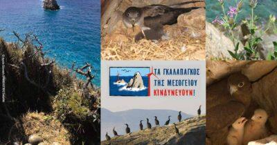 Η αποτροπή της καταστροφής των νησίδων του Νοτίου Αιγαίου στο χέρι μας