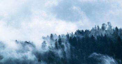 """Δημοσιοϋπαλληλική Ενότητα Δασολόγων: Η υλοποίηση των δασικών χαρτών αποσκοπεί στην """"απελευθέρωση"""" των επενδύσεων και τη νομιμοποίηση καταπατήσεων"""
