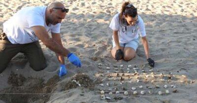 Κάλεσμα εθελοντών από τον Φορέα Διαχείρισης Λιμνοθάλασσας Μεσολογγίου – Ακαρνανικών Ορέων