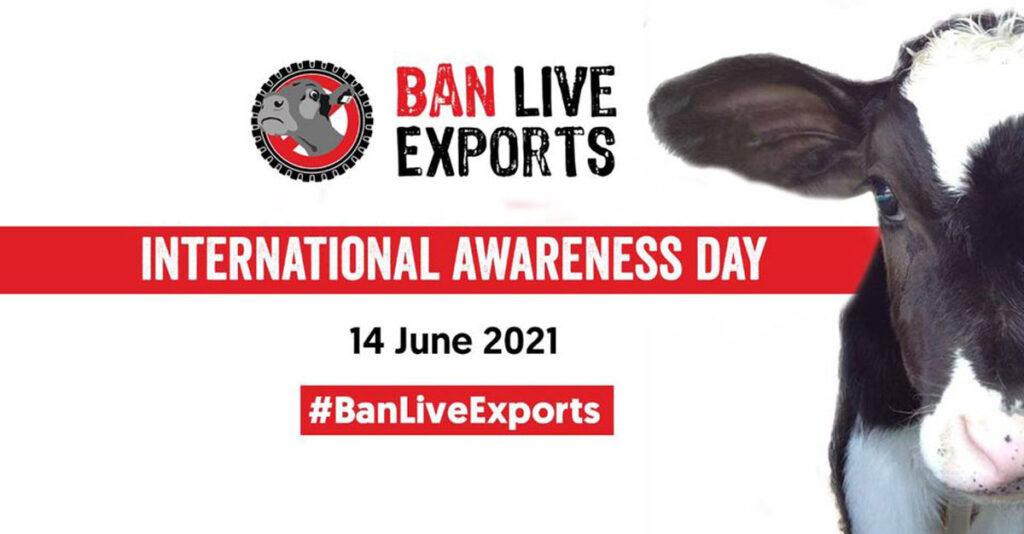 Ban Live Exports