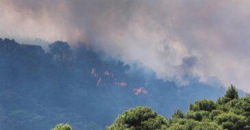 Πυρκαγιά Γερανείων: Ένα μήνα μετά ενημέρωση και εγρήγορση είναι ζητούμενα