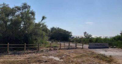 Πάτρα: Προστασία του «μαιευτηρίου» των αμφιβίων στο Πλατανόδασος