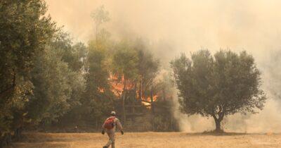 Αχαΐα: Οι πυρκαγιές είναι ένα ακόμα κρατικό και καπιταλιστικό έγκλημα
