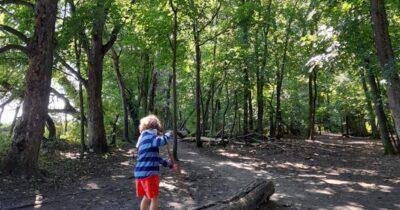 Η επιστροφή στα δάση