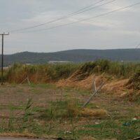 Εύβοια: Να σταματήσει τώρα η εγκατάσταση φωτοβολταϊκών που περικυκλώνουν τον Κολοβρέχτη