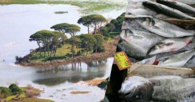 Στροφυλιά: Εθνικό Πάρκο ή «Ιχθυοτροφείον ο Πρόκοπος»;